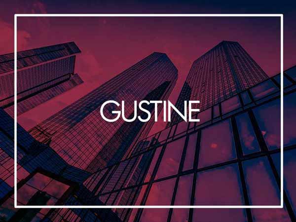 Gustine Company